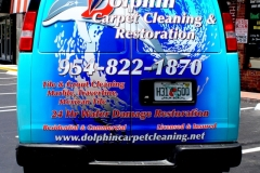 dolphin-carpet-cleaning-2